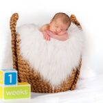 photographer for Newborn baby portrait at moments in time photography studio Halifax