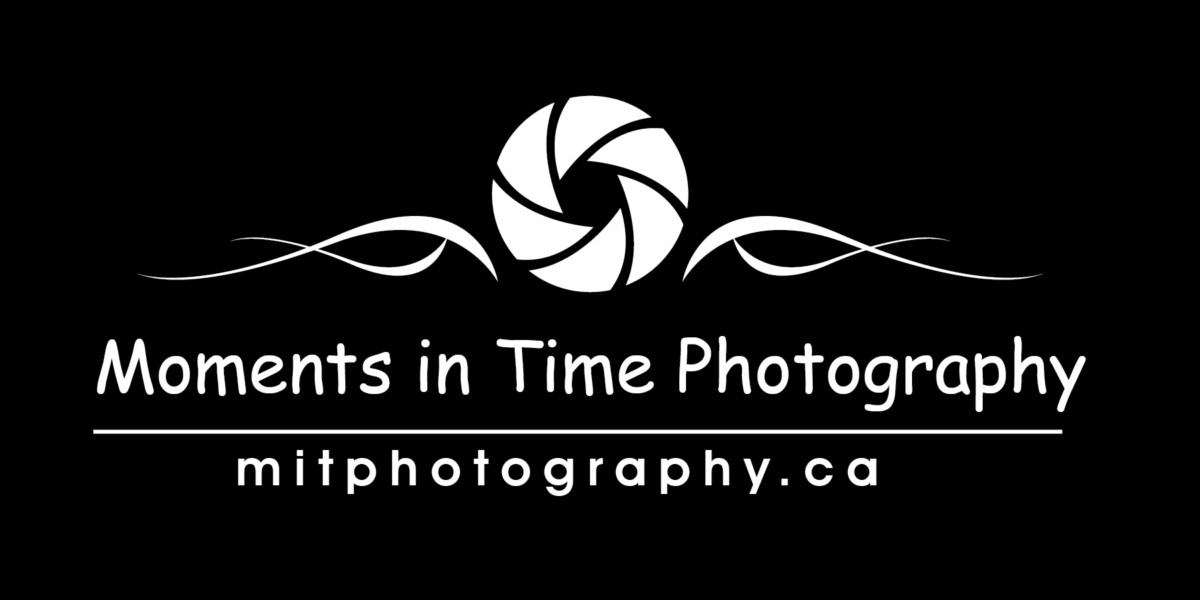 Moments in time photography logo