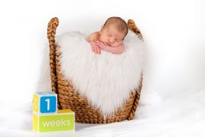 Newborn Portraits in Studio